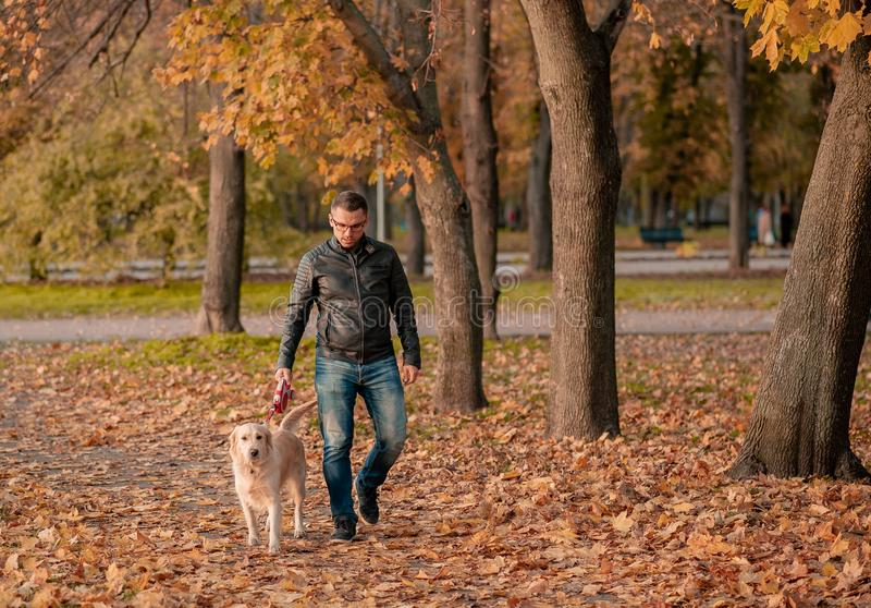 Young man hugging golden retriever dog in autumn outdoors stock photography