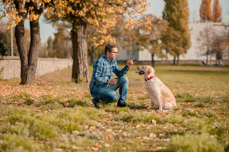 Young man hugging golden retriever dog in autumn outdoors stock images