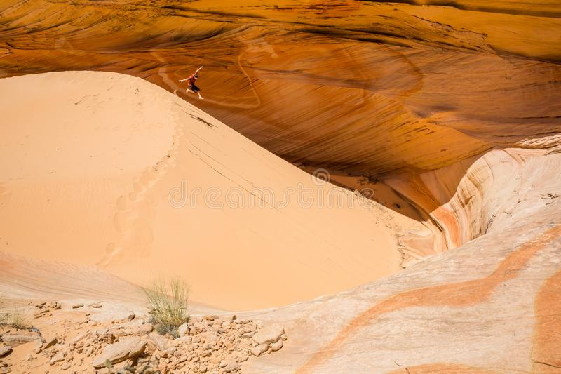 Young person jumping down sand dune in the Utah/Arizona desert royalty free stock images