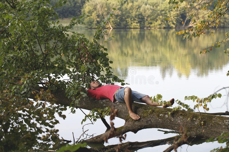 young man lies on a tree and relaxes stock photo