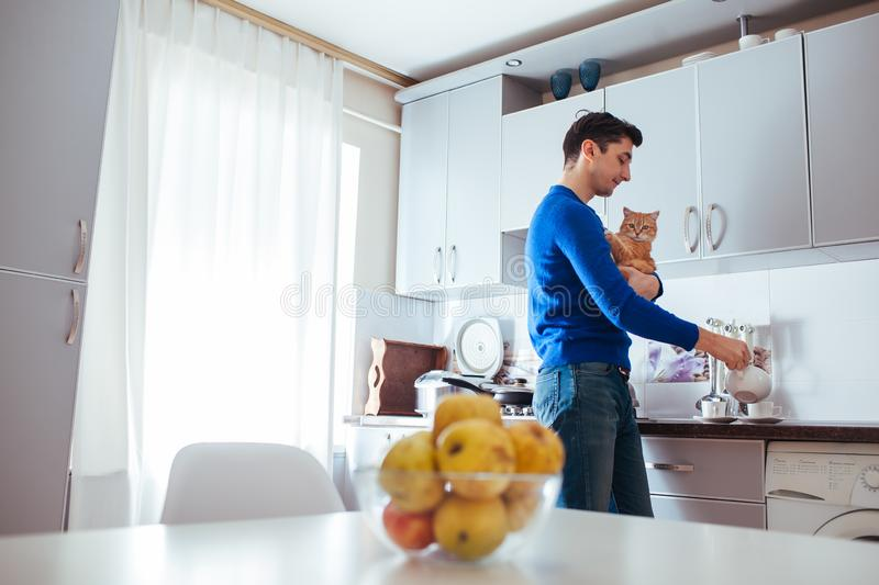 Young man make tea on kitchen with a cat.  royalty free stock photos
