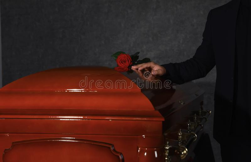 Young man near casket with red rose in funeral home royalty free stock images