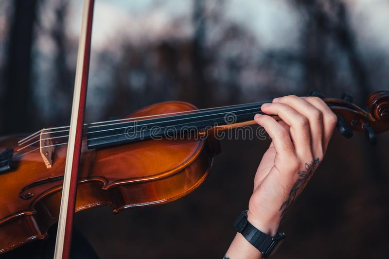 Young man playing violin in the autumn forest stock photo