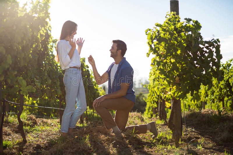 Young man proposing girlfriend at vineyard. During sunny day royalty free stock photography