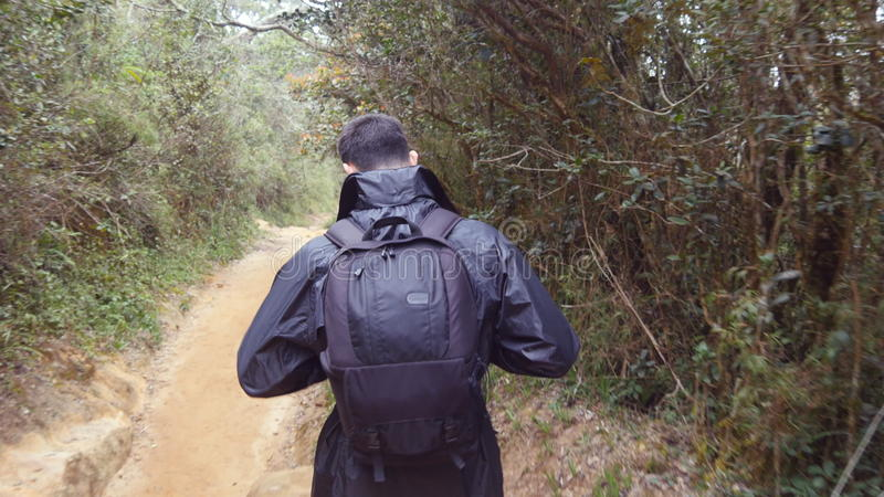 Young man in raincoat going on wood trail during travel. Hiking guy with backpack walking in tropical wet forest. Follow stock photo