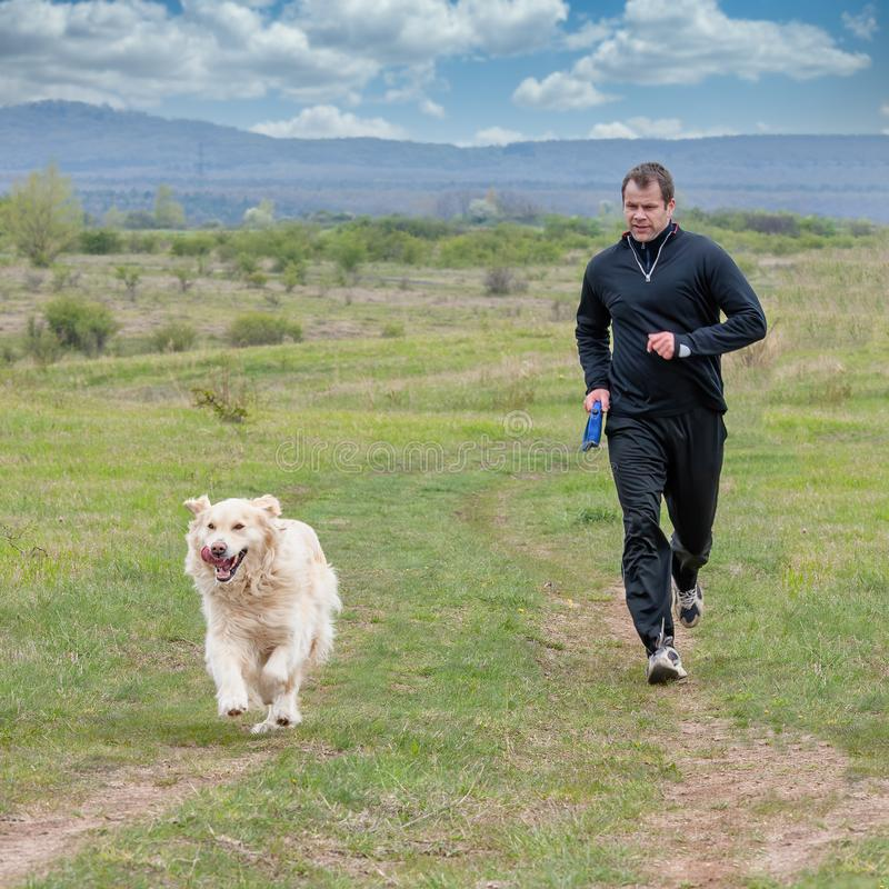 Young man running with your golden retriever dog on the meadow stock image
