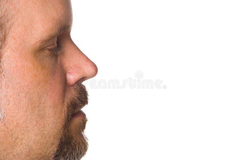 Download Young Man Side View Of Face Stock Image - Image: 5499157