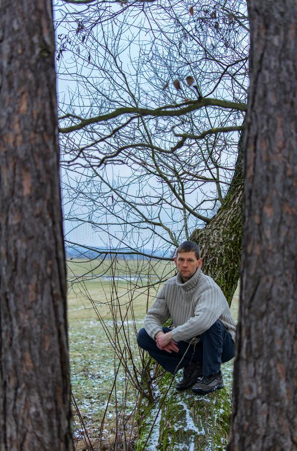 Young man sit on tree in sweater royalty free stock photography