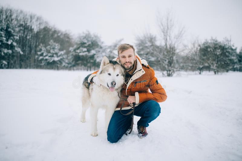 Young man sits in snow next to a dog Alaskan Malamute and hugs his royalty free stock photography