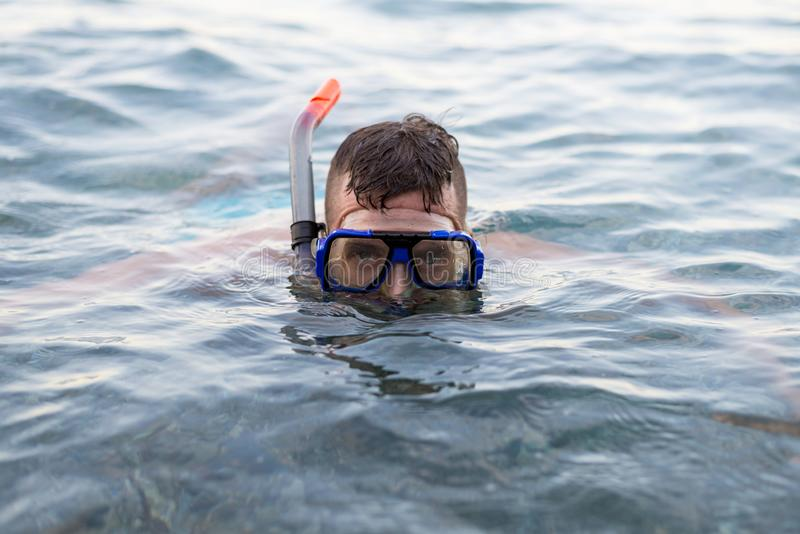 Young man swiming in a diving mask royalty free stock photography