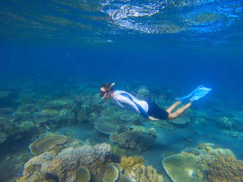 Male snorkel in tropical lagoon undersea photo. Snorkeling in coral reef. Summer holiday activity. royalty free stock image
