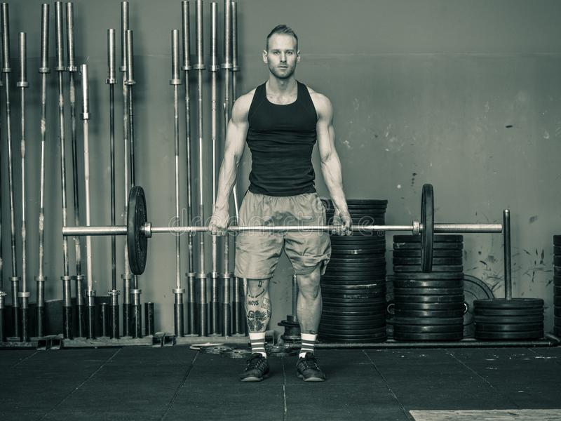 Young man training legs in gym. Handsome young man training legs lifting barbell doing squats, standing in a gym royalty free stock photo