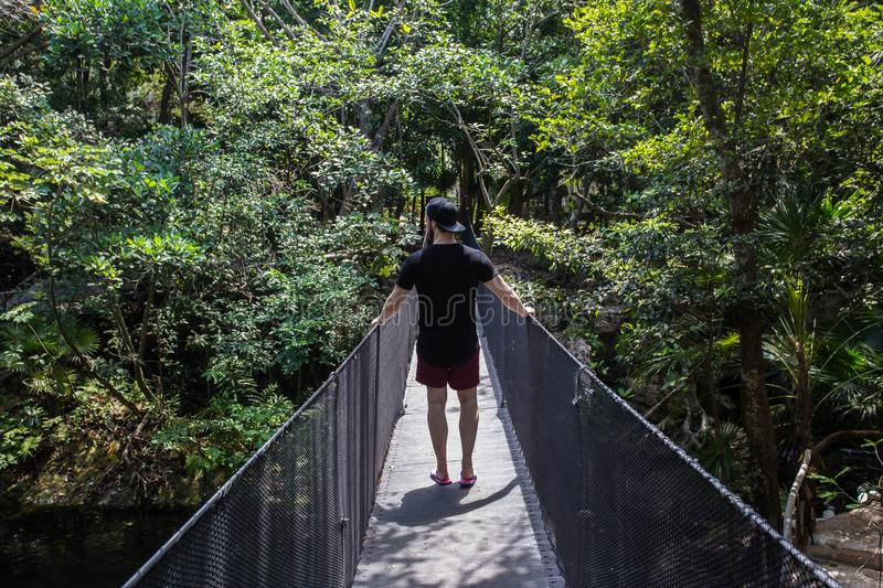 Young men traveling in a tropical jungle on a summer day on a wooden bridge royalty free stock images