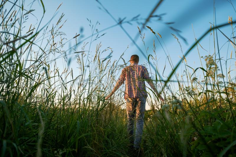 Young man walking in the field, alone royalty free stock photography