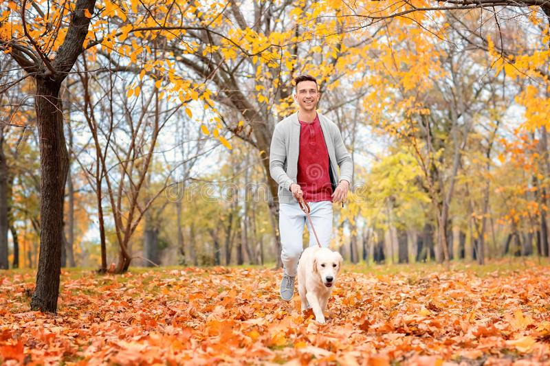 Young man walking his dog. In park royalty free stock photos