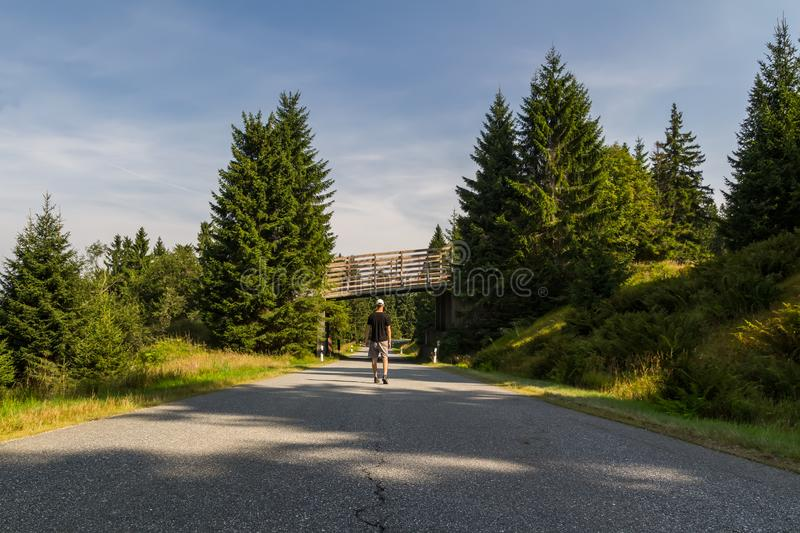 Young man walking on road in white cap and shorts to wood crossover, Sumava National Park, Czech republic and Germany royalty free stock image