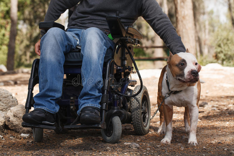 Man in a wheelchair with his faithful dog. Young man in a wheelchair with his faithful dog walk in the park royalty free stock image