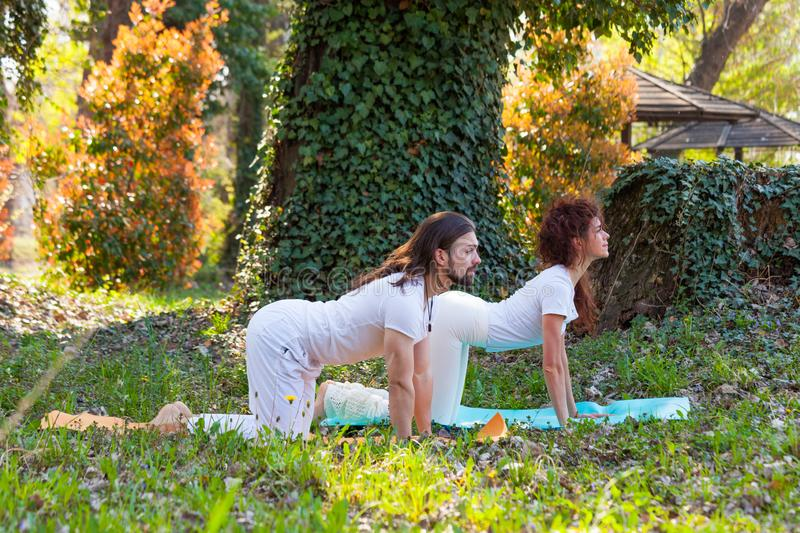 Young man and woman practice yoga outdoor in wood beautiful summer day royalty free stock photo