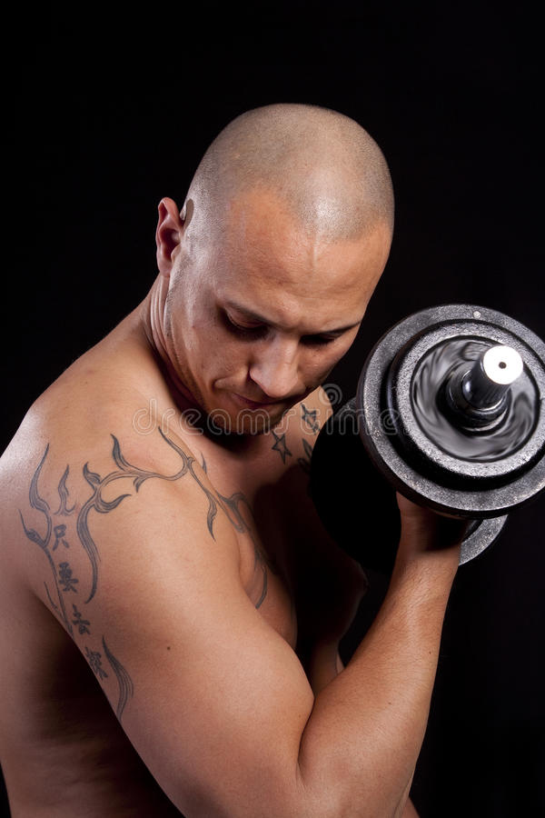 Download Young man working out stock photo. Image of muscle, portrait - 13846976