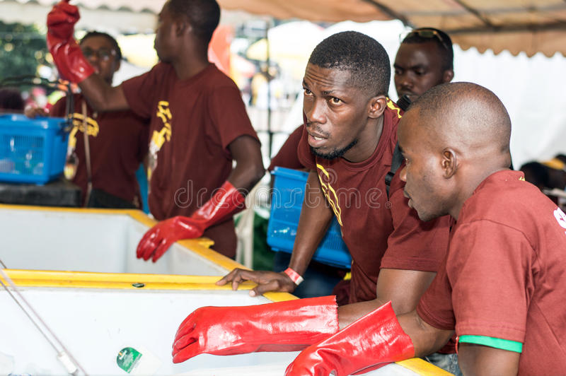 Young men ice vendors. Abidjan, 11 September 2016: young men sell ice. Young men in uniform and wearing Gans leaning to open the freezers ready to serve stock photos
