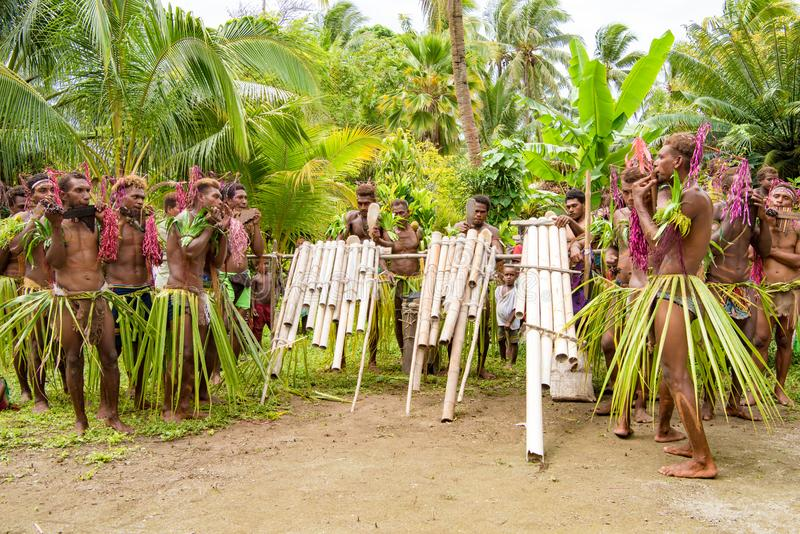 Musicians playing handmade pan flute and drumming handmade drums, Solomon Islands. Musicians between tropical vegetation stock photography