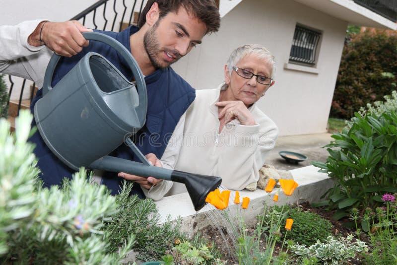Man watering plants stock image