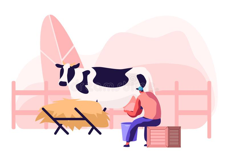 Young Milkmaid Woman in Uniform Sitting on Box and Milking Cow into Bucket. Milk and Dairy Farmer Agriculture Products, Farming vector illustration