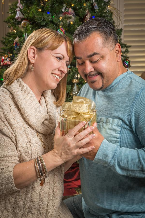 Young Mixed Race Couple with Present Near Christmas Tree. Happy Young Mixed Race Couple with Present Near Christmas Tree stock images
