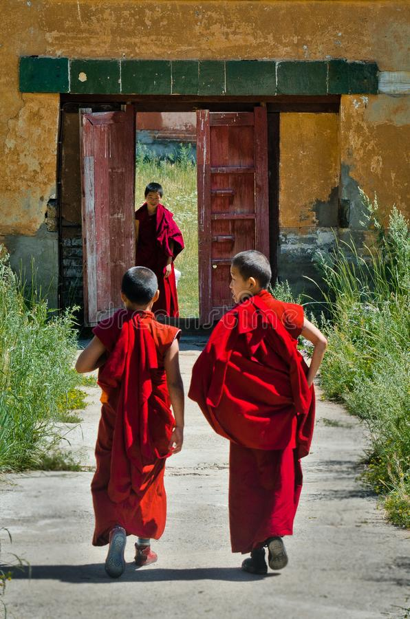 Young Mongolian monks in Amarbayasgalant Monastery royalty free stock photos