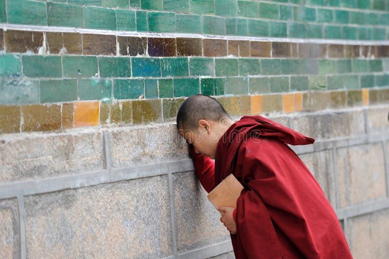 Young monk praying stock photos