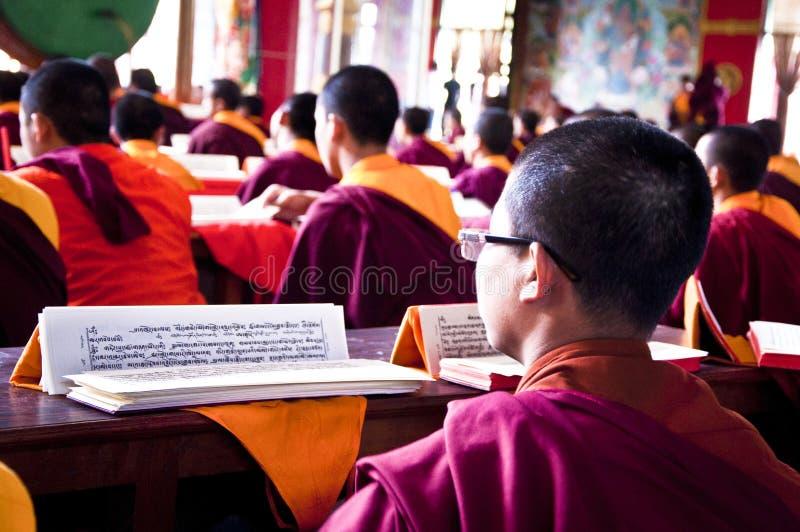 Young tibetan monk reading buddhist religious text royalty free stock photo