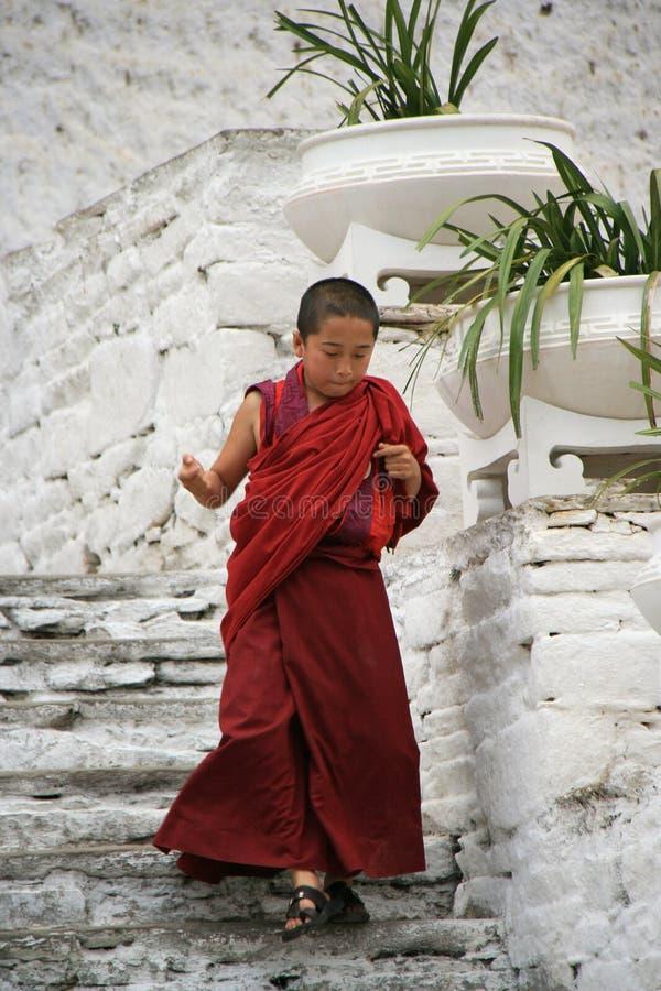 Young monk - Rinpung Dzong - Paro - Bhutan royalty free stock images