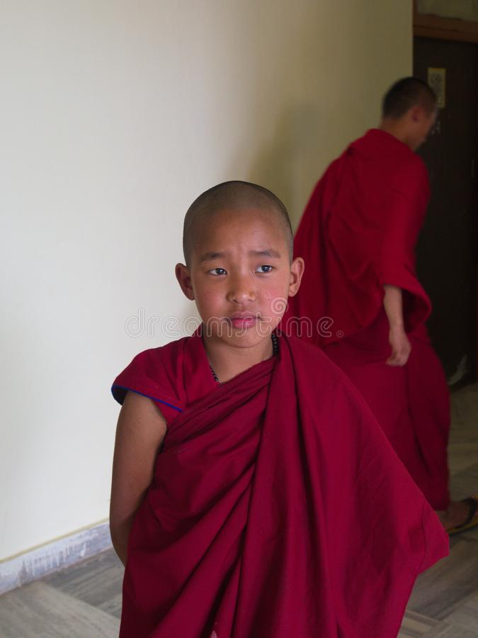 Young Monk in the temple, Gangtok City,Sikkim INDIA , 16th APRIL. 2013 stock photography