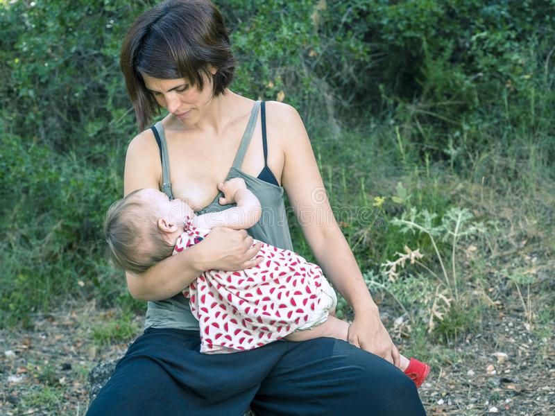 Young mother breastfeeding a baby in nature. stock images