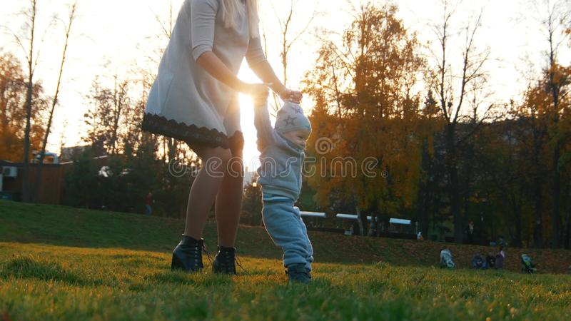 Young mother and her little baby teaching how to walk in autumn park. Mid shot royalty free stock images