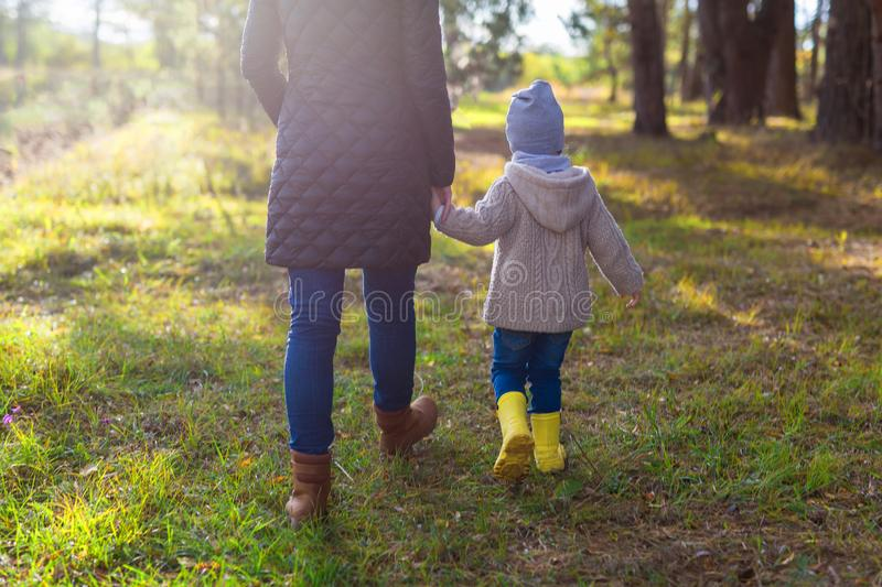Young mother holding her kid`s hand while walking in the forest. Rear view royalty free stock photography