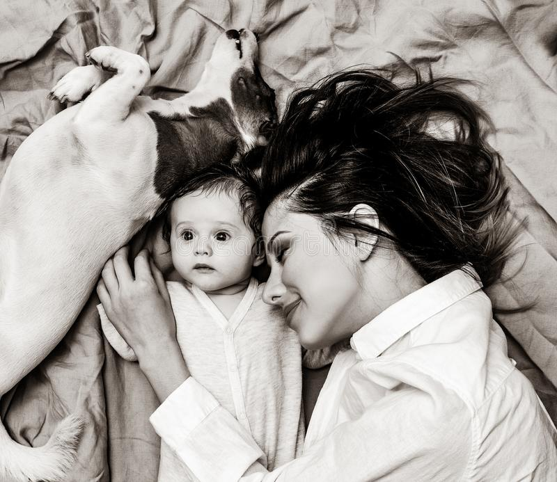Young mother and a little child with dog stock image