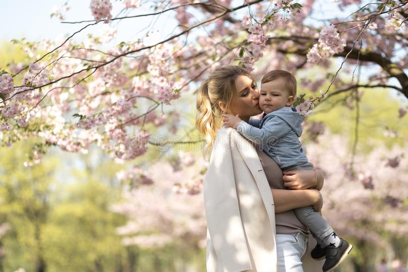 Young mother mom holding her little baby son boy child under blossoming SAKURA Cherry trees with falling pink petals and stock images