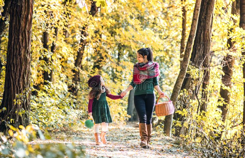 A young mother with a toddler daughter walking in forest in autumn nature. stock photo