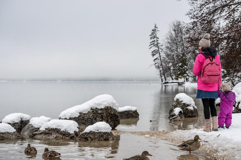 Young mother in winter jacket standing by lake Bohinj holding ha stock images
