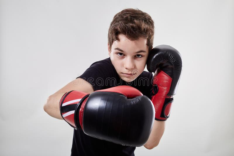 Young muay thai fighter. Young boy muay thai fighter in various postures stock photo