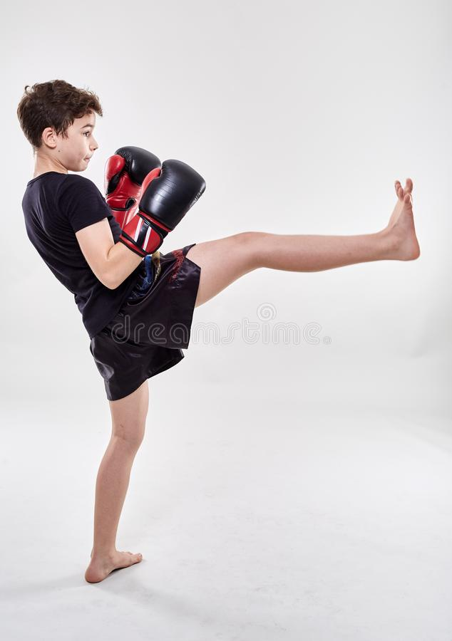 Young muay thai fighter. Young boy muay thai fighter in various postures royalty free stock image