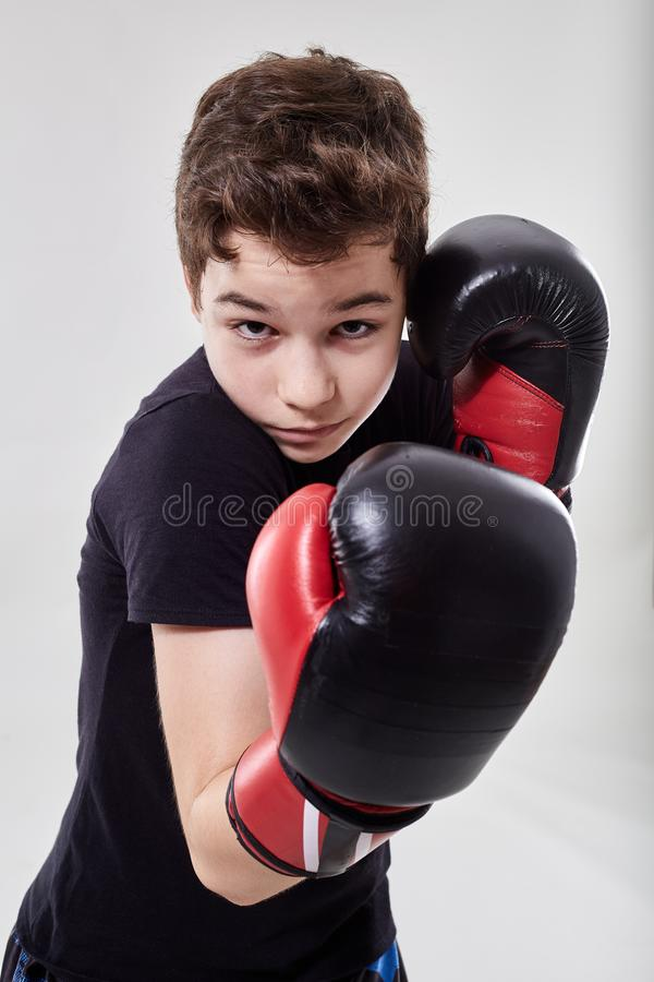 Young muay thai fighter. Young boy muay thai fighter in various postures stock image