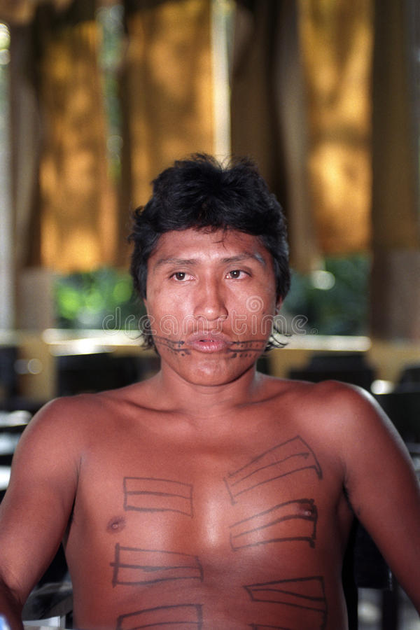 Young native indian of Brazil. The Guajajara are one of the most numerous indigenous people (around 13,500) of Brazil. Inhabit 11 indians lands, all located in royalty free stock images