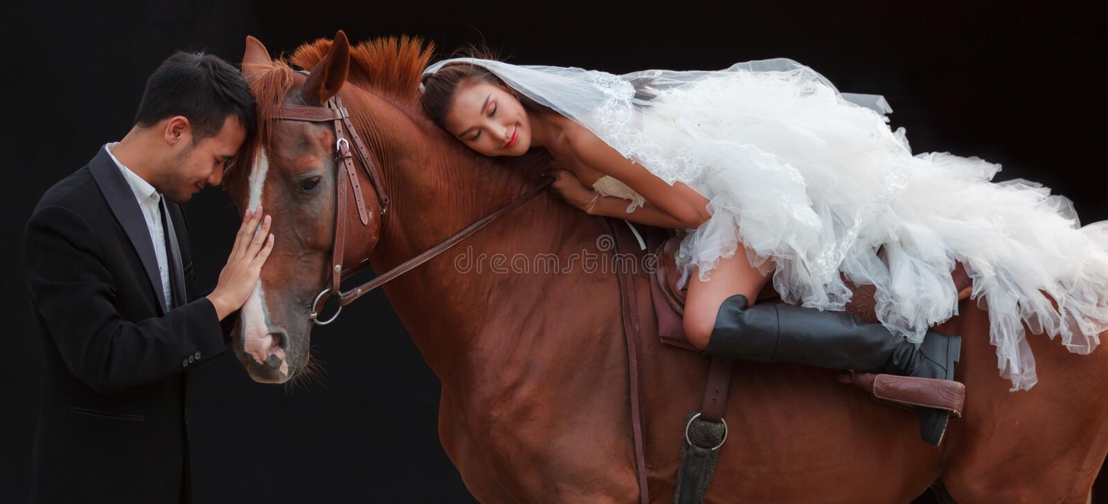 Young newlywed couple, beautiful beauty bride in fashion white bridal wedding costume riding on strong muscular horse standing by stock image