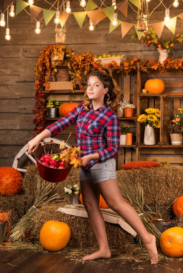 Young nice teenager girl is in the barn stock images