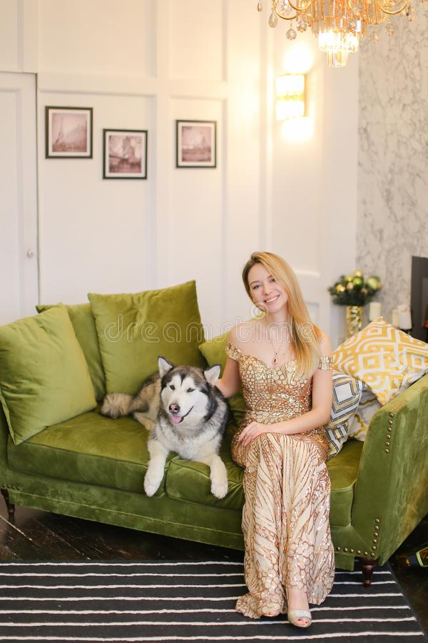Young nice woman wearing dress sitting on sofa in living room with malamute. royalty free stock image