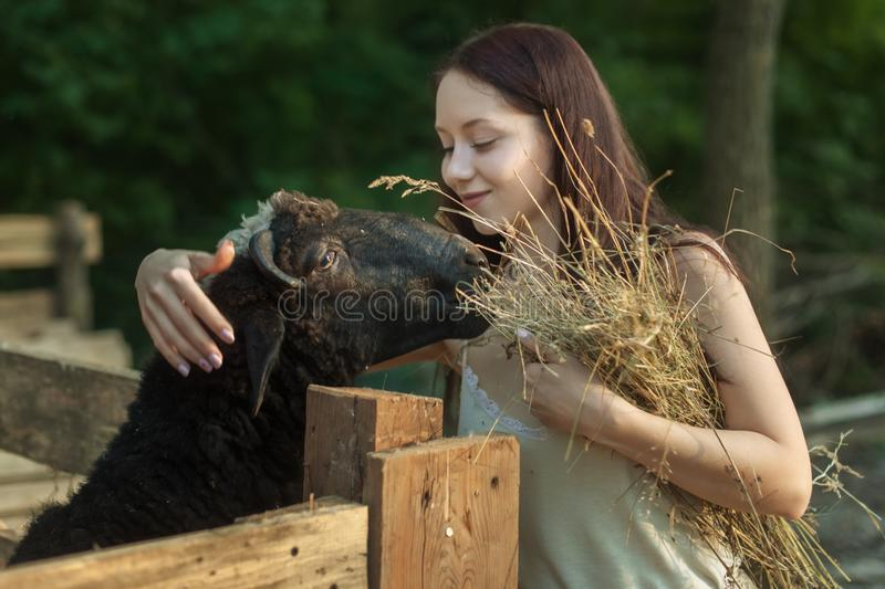 Young peasant woman is engaged in farming on the ranch stock photo