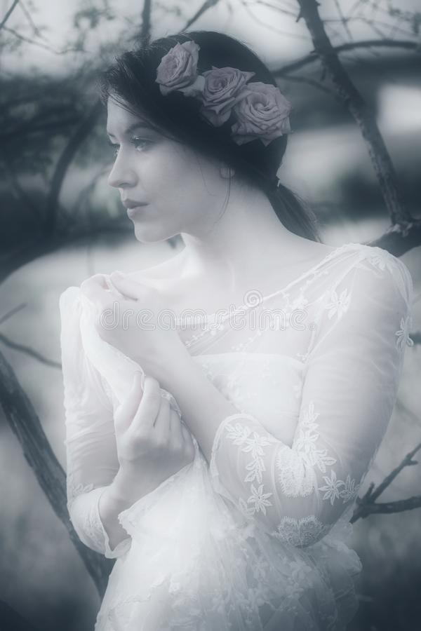 Young pensive woman portrait in white lacy dress and roses in ha royalty free stock images