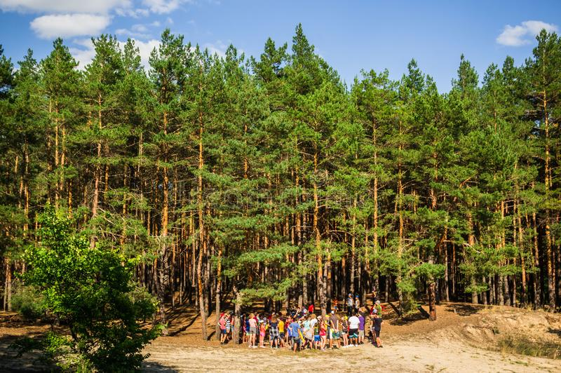 Young People in Forest wide horizontal royalty free stock image